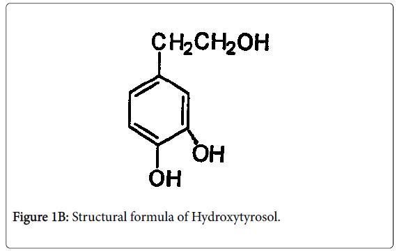 experimental-food-chemistry-Hydroxytyrosol