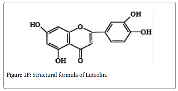 experimental-food-chemistry-Luteolin