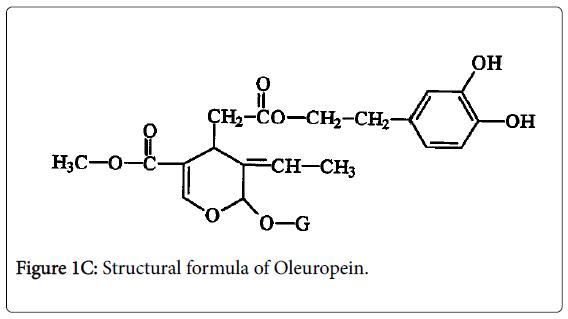 experimental-food-chemistry-Oleuropein
