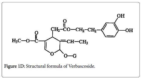 experimental-food-chemistry-Verbascoside