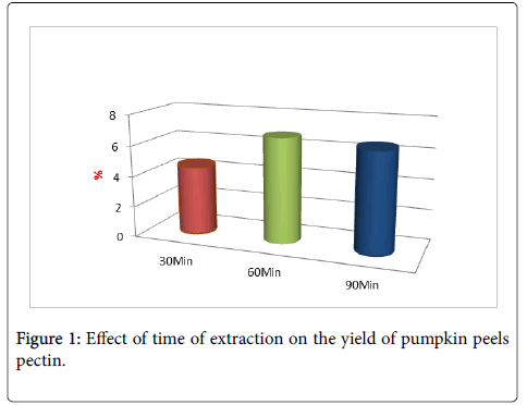 experimental-food-chemistry-pumpkin-peels