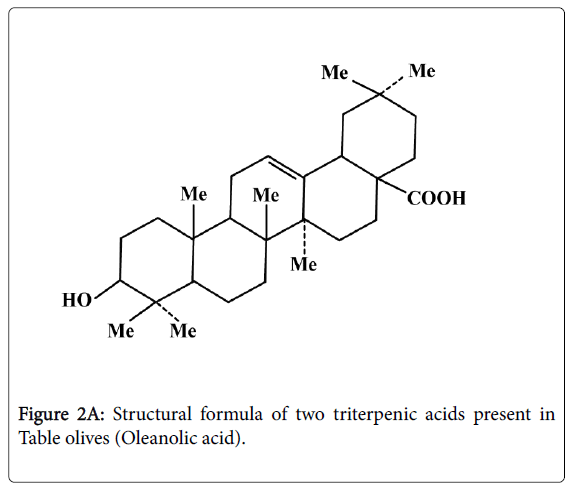 experimental-food-chemistry-triterpenic-acids