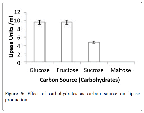 fermentation-technology-carbohydrates-carbon