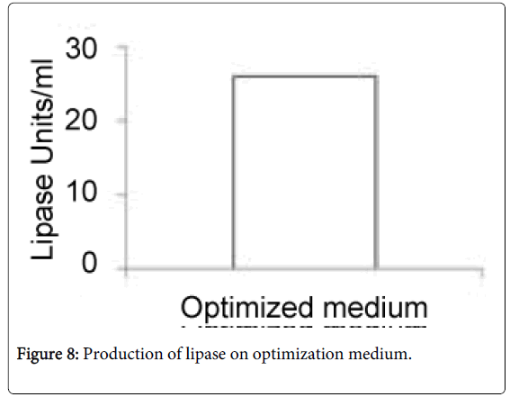 fermentation-technology-lipase-optimization