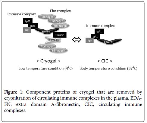 fibromyalgia-Component-proteins