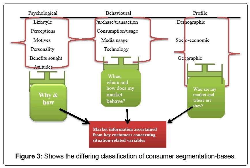 sociocultural segmentation example