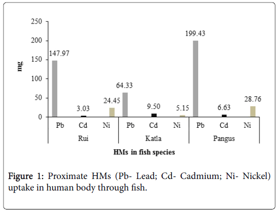 fisheries-and-aquaculture-human-body