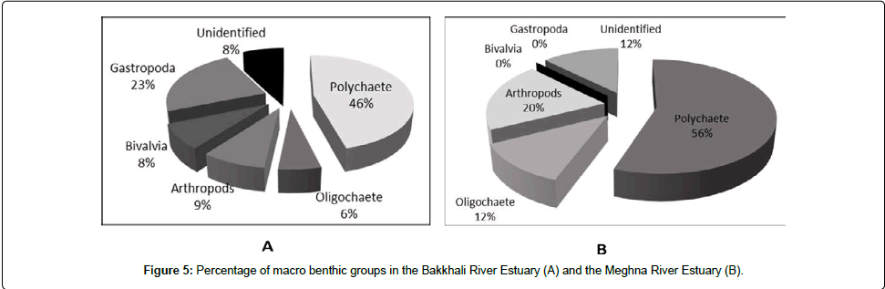 fisheries-and-aquaculture-journal-Percentage-macro-benthic-groups