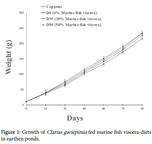 fisheries-aquaculture-Growth-Clarias-gariepinus