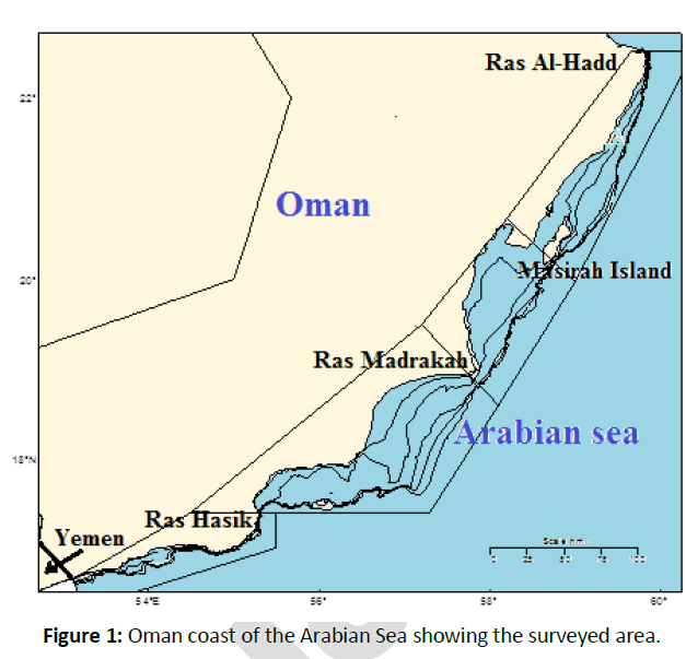 fisheries-aquaculture-Oman-coast-Arabian