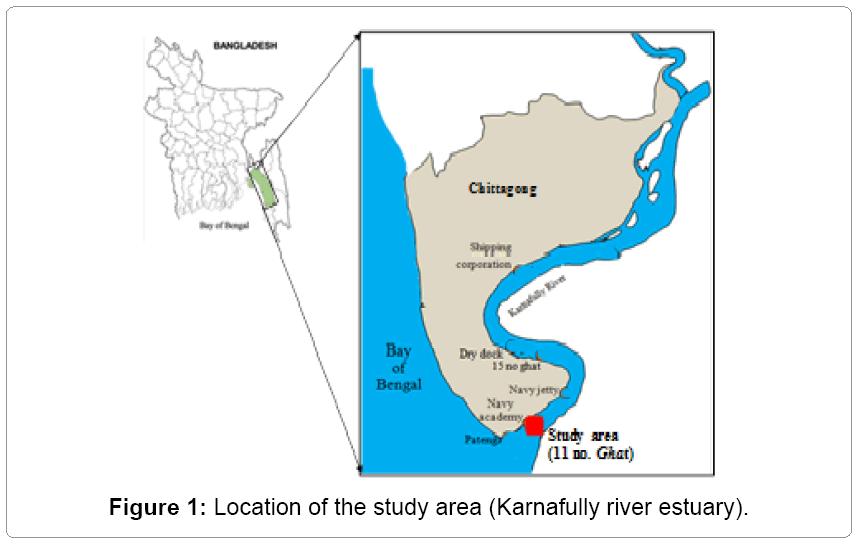 fisheries-livestock-production-Karnafully