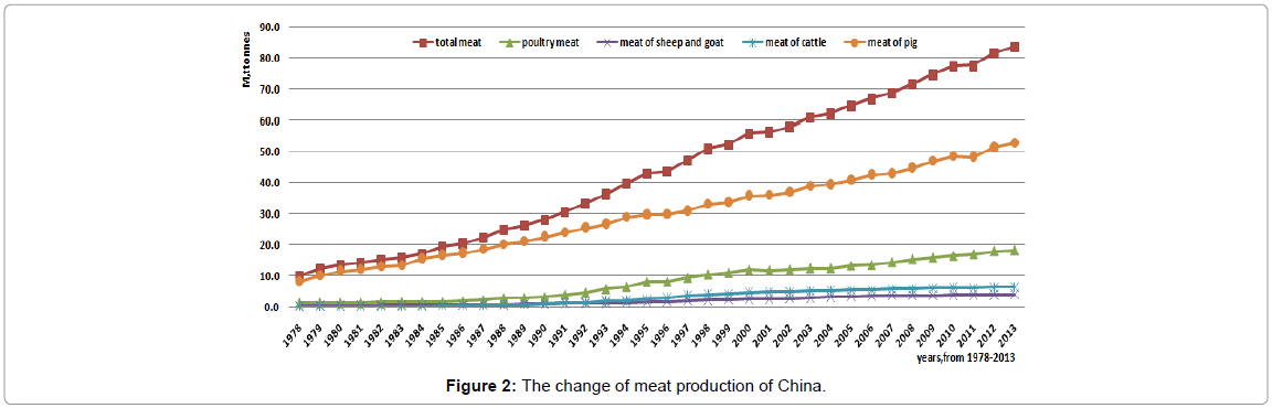Overview of the Beef Cattle Industry in China: The widening