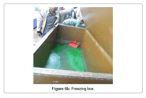 fisheries-livestock-production-freezing