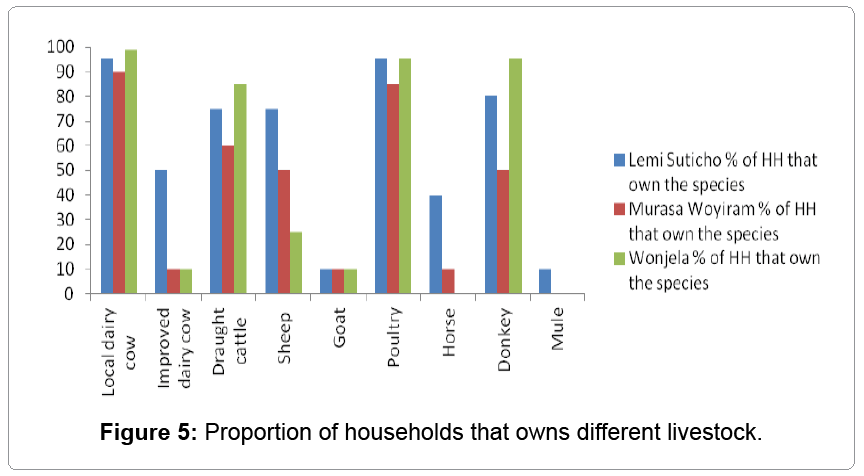 fisheries-livestock-production-households