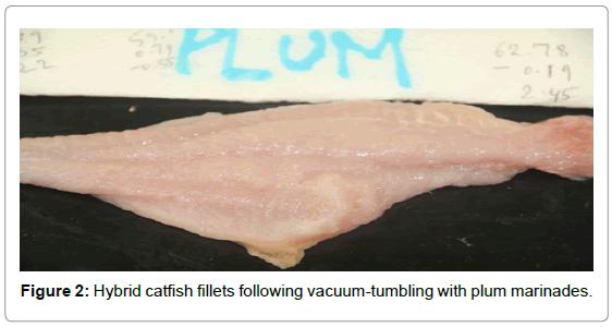 fisheries-livestock-production-hybrid-catfish-fillets