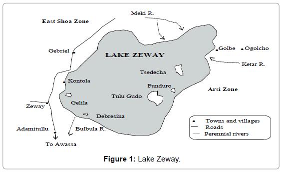fisheries-livestock-production-lake-zeway