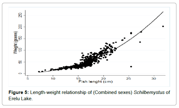 fisheries-livestock-production-length-schilbemystus