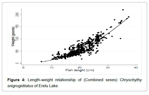 fisheries-livestock-production-length-snigrogiditatus