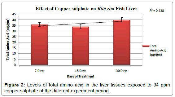 fisheries-livestock-production-levels-amino-acid-liver