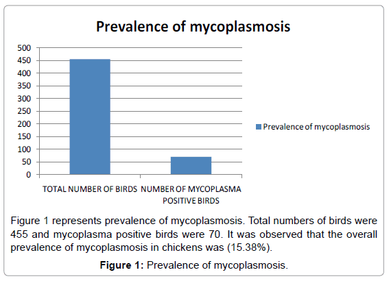 fisheries-livestock-production-prevalence-mycoplasmosis