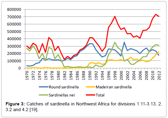 fisheries-livestock-production-sardinella-africa-divisions