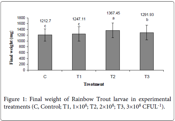 fisheries-livestock-production-weight-rainbow-trout