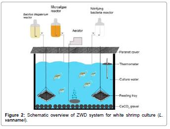fisheries-livestock-production-white-white