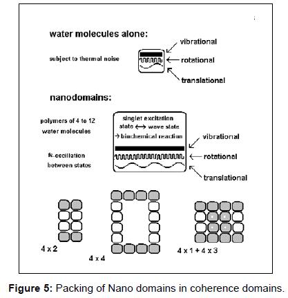 fluid-mechanics-packing-nano-domains