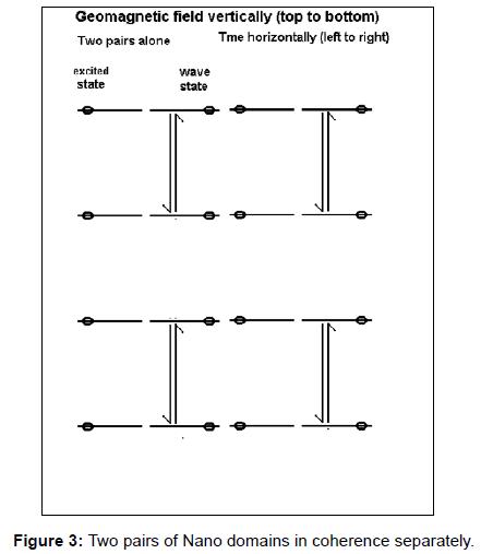 fluid-mechanics-two-pairs-separately