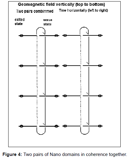 fluid-mechanics-two-pairs-together