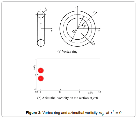 fluid-mechanics-vortex-ring-azimuthal-vorticity