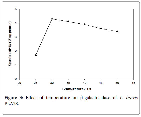 food-industrial-microbiology-effect-temperature-brevis