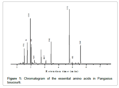 food-processing-technology-Chromatogram