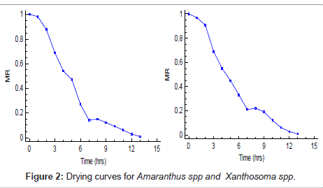 food-processing-technology-Drying-curves