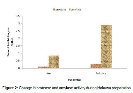 food-processing-technology-Hakuwa-preparation