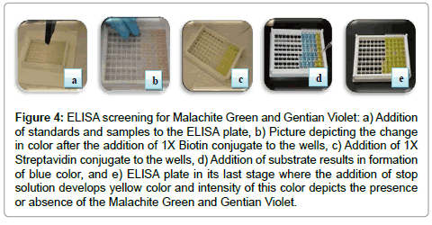 food-processing-technology-Malachite-Green