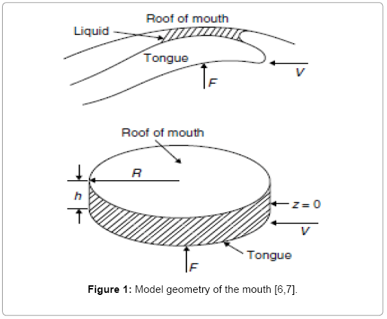 food-processing-technology-Model-geometry