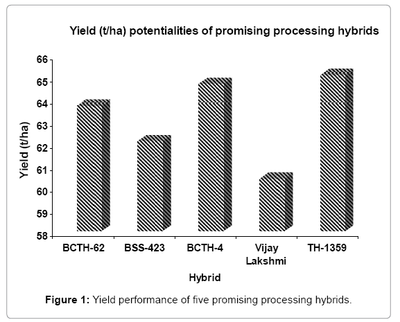 food-processing-technology-Yield-performance