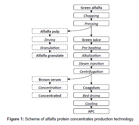 food-processing-technology-alfalfa-protein-concentrates