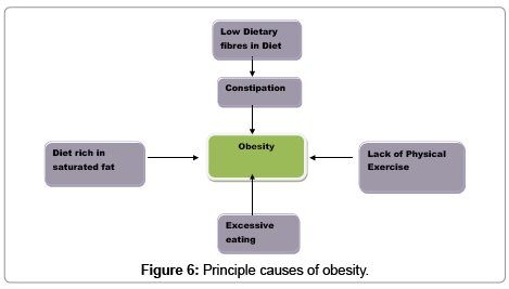 food-processing-technology-causes-obesity
