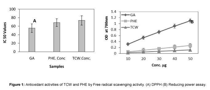 in vitro antioxidant activity thesis Hydrogen peroxide radical scavenging and total antioxidant activity of hawthorn serhat keser 1, sait celik 2, semra turkoglu 3, ökkes yilmaz 4.