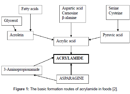 food-processing-technology-formation-routes-acrylamide