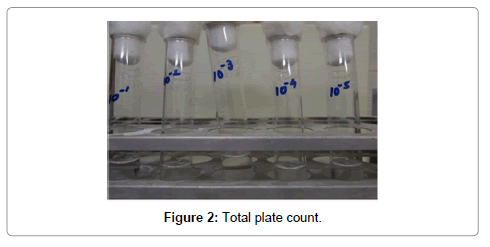 food-processing-technology-plate-count
