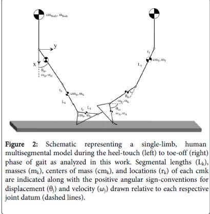 forensic-biomechanics-Model-facilitated