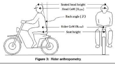 forensic-biomechanics-Rider-anthropometry