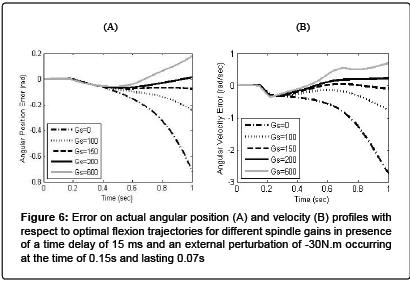 forensic-biomechanics-angular-position