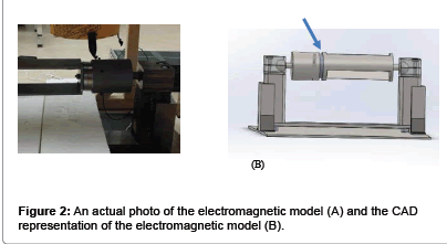 forensic-biomechanics-electromagnetic-model