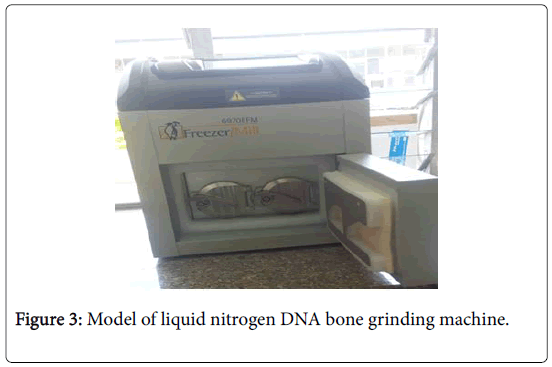 forensic-pathology-grinding-machine