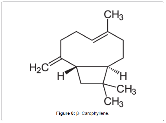 forensic-research-Carophyllene