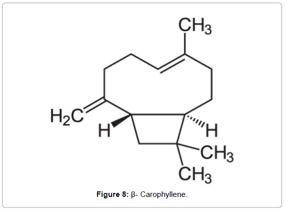 forensic-research-Carophyllene